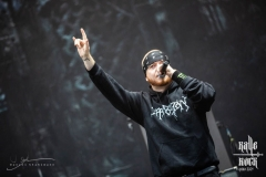 2018-06-15-With-Full-Force-Hatebreed-008